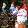 Regarding Garden Gnomes